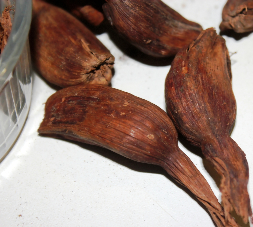 épices mbongo (4)