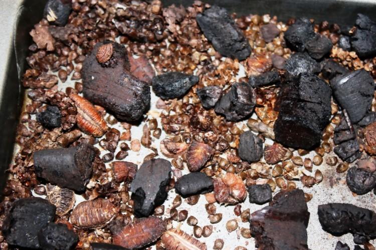 épices mbongo (8)