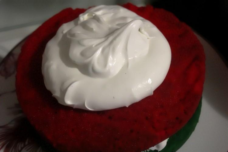 gateau vanille glaçage mascarpone (13)